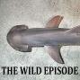 Artwork for Bonnethead Shark : The Shark That Eats Grass