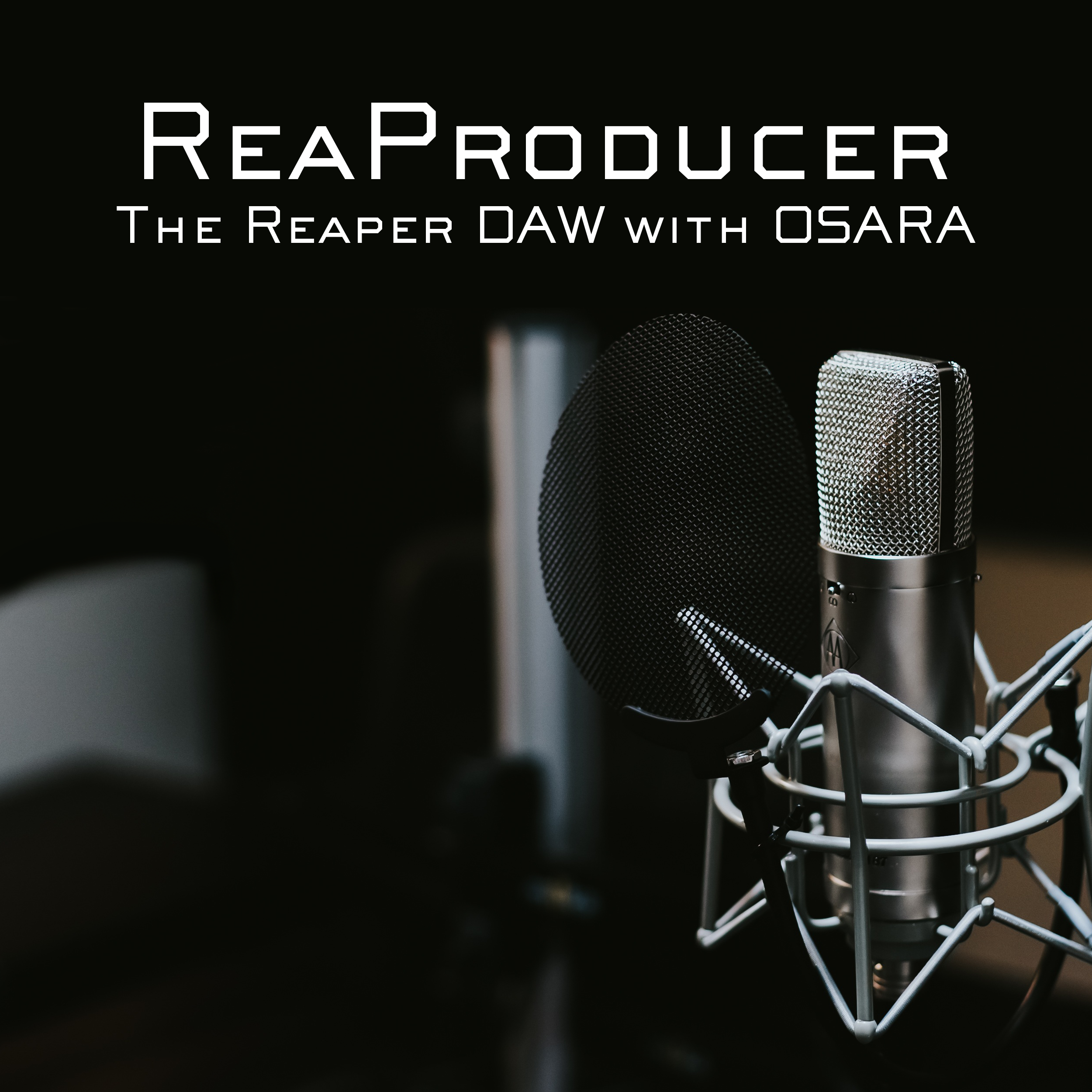 ReaProducer - Accessible Audio Production with Reaper show art
