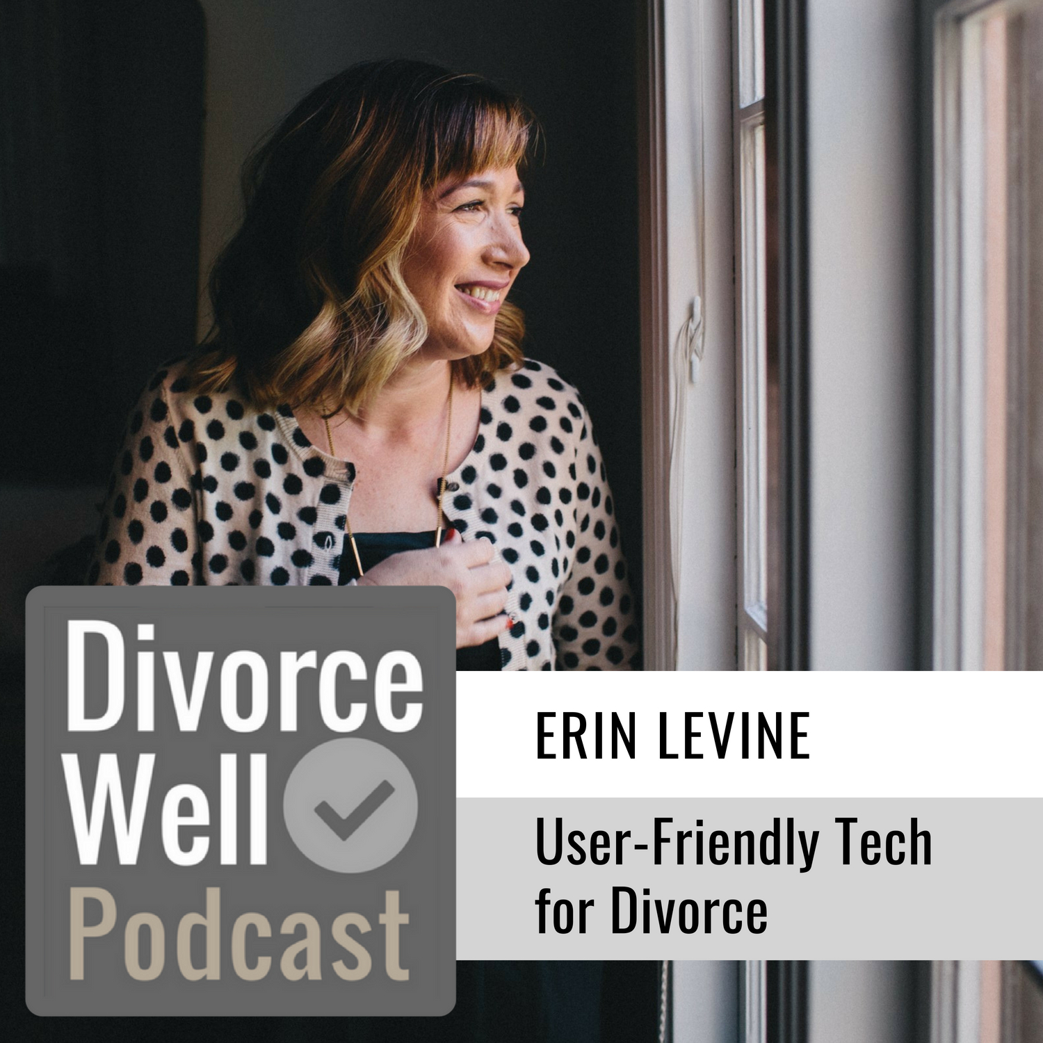 The Divorce Well Podcast - 24 - User-Friendly Tech for Divorce, with Hello Divorce founder Erin Levine