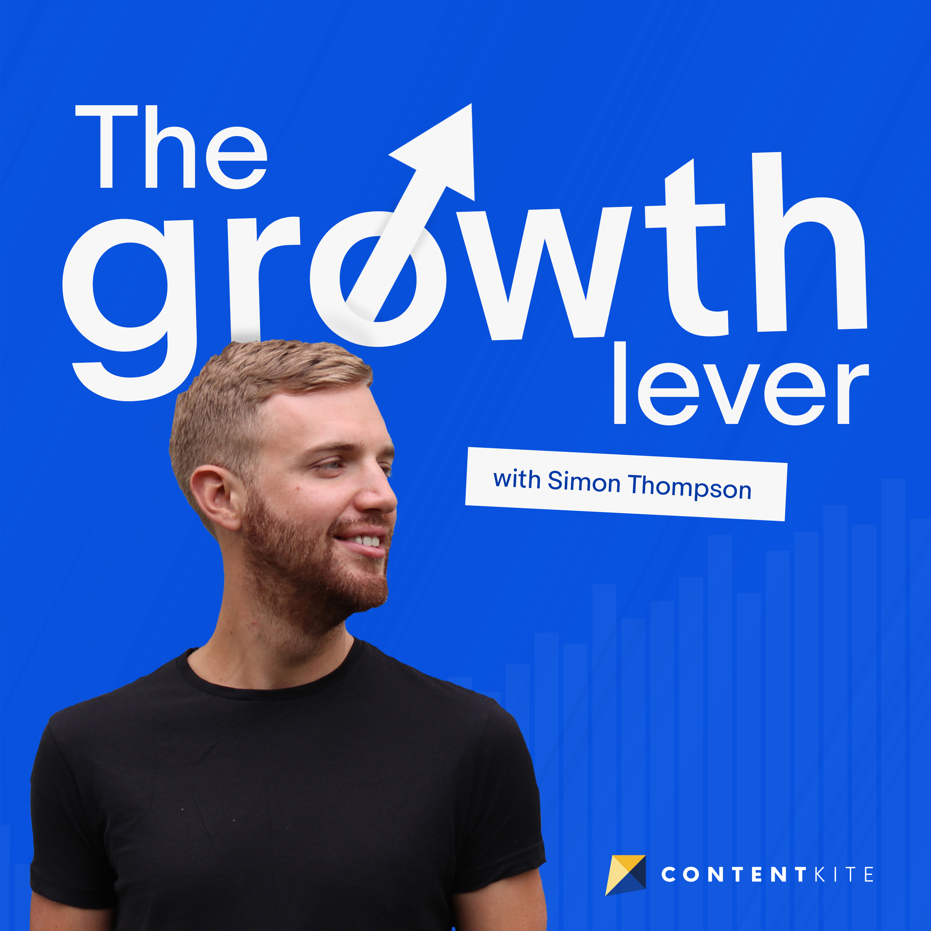 The Growth Lever: Practical Advice for Digital Marketers show art