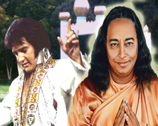 Elvis and The Yogi<br />Take a Magical, Mystery Tour