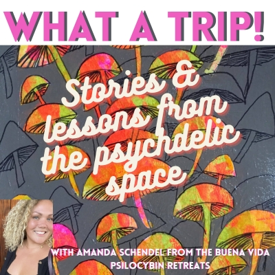 What a Trip! Stories & Lessons from the Psychedelic Space show image