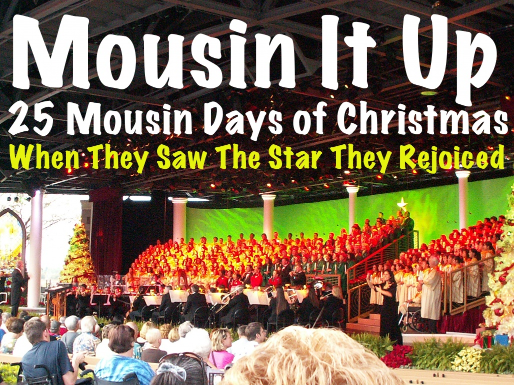 25 Mousin Days of Christmas - When They Saw the Star They Rejoiced