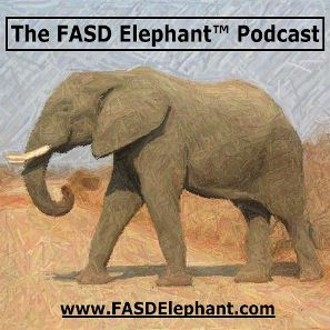 FASD Elephant (TM) #008: The FASD Wheel (TM) - The Ten Brain Domains of FAS and FASD