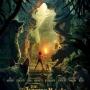 Artwork for Episode 12 Jungle Book