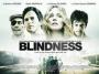 Artwork for Episode 225 - Blindness and Adaptation
