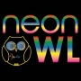 Artwork for Neon Owl Interview with DJ Producer Duo Win and Woo