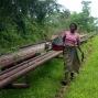 Artwork for Afrique subsaharienne : la voie de la reprise