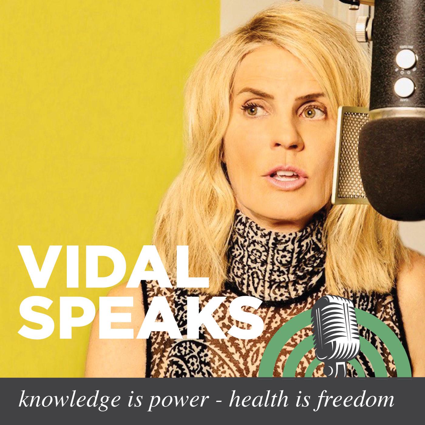 Vidal Speaks show art