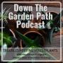 Artwork for Troubleshooting Houseplants