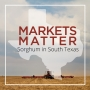 Artwork for Markets Matter: Sorghum in South Texas