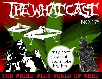 The What Cast #175 - The Weird Wide World Of Weed with Dirty Devoe