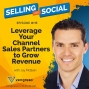 Artwork for Leverage Your Channel Sales Partners to Grow Revenue, with Jay McBain, Episode #115