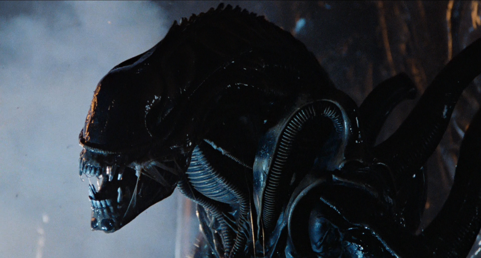 12: Alien show art