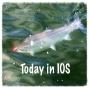 Artwork for Tii - iTem 0375 - iOS 9.2, Watch OS 2.1, tvOS 9.1