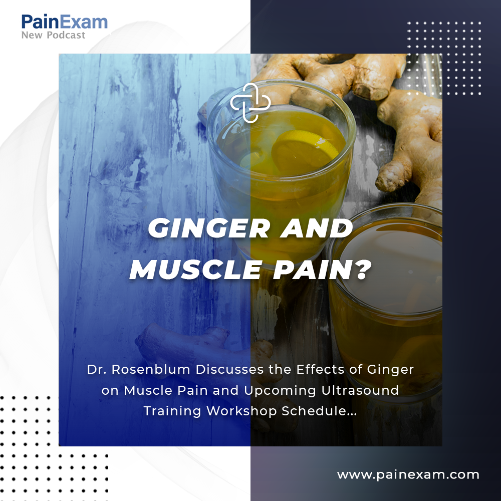 ginger and muscle pain
