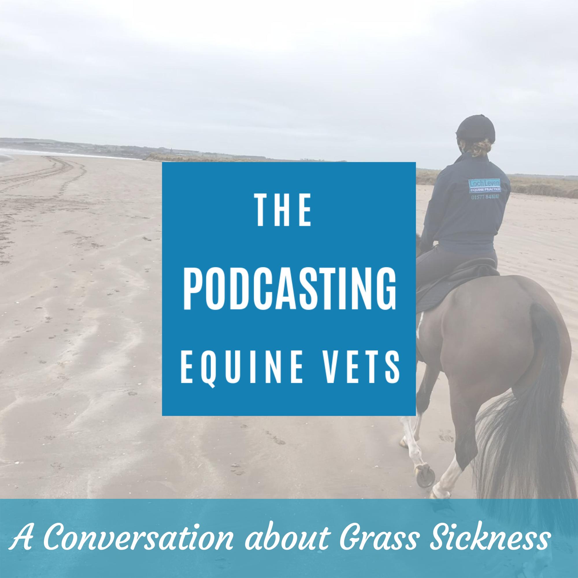 A Conversation About Equine Grass Sickness