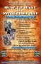 Artwork for How to Hunt the Whitetail Rut Workshop HFJ 102