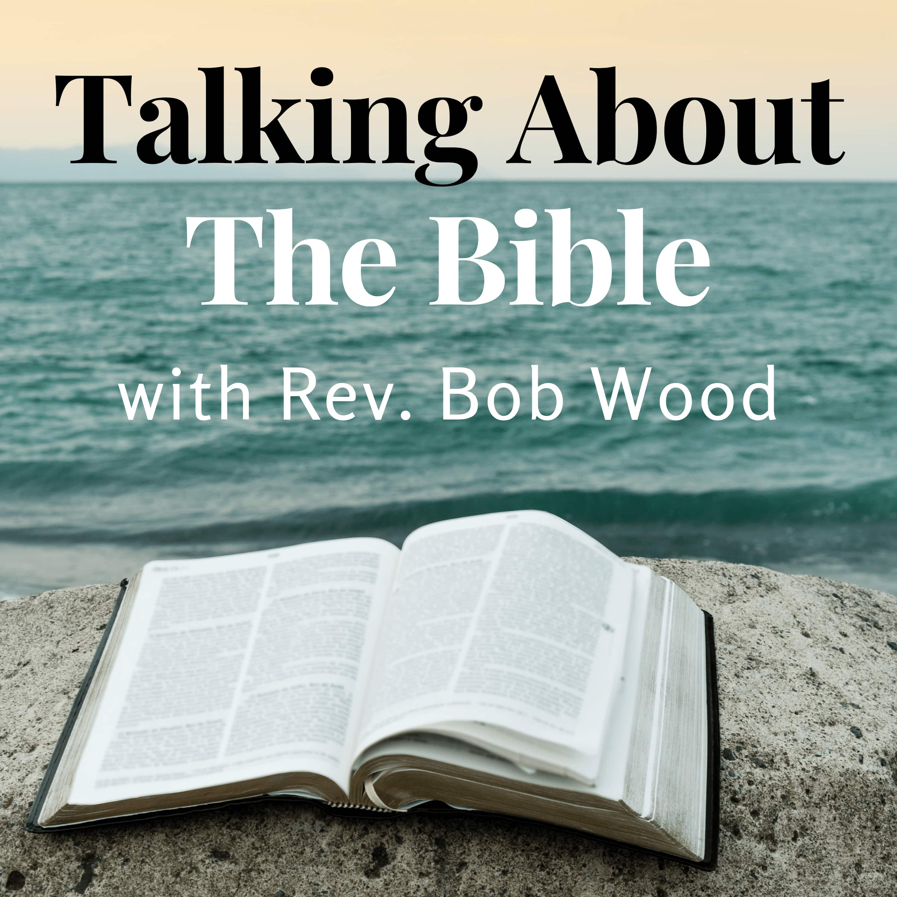 Talking About the Bible show art