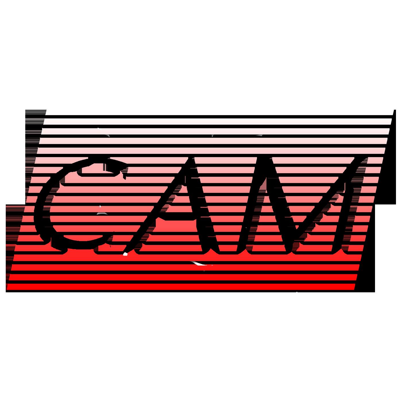 The CAMcast show art
