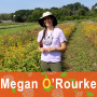 Artwork for 131 - Megan O'Rourke - Pasture for beef... and bees?