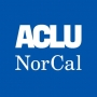 Artwork for Homelessness Interview Series: Abre' Conner from the ACLU Foundation of Northern California