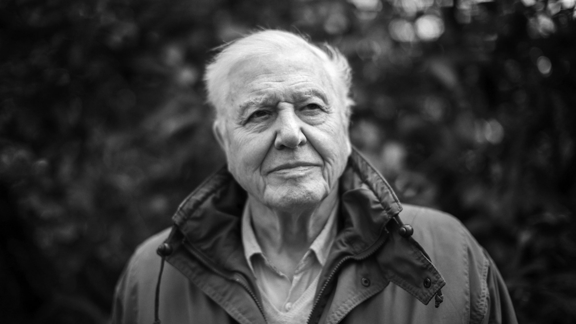 David Attenborough Ten Words