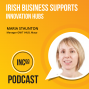 Artwork for Irish Business Supports : Innovation Hubs