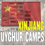 Artwork for #85 Satellite Images Reveal Xinjiang Uyghur Concentration Camps | Megha Rajagopalan