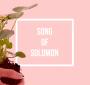 Artwork for Song Of Solomon: Lasting Love