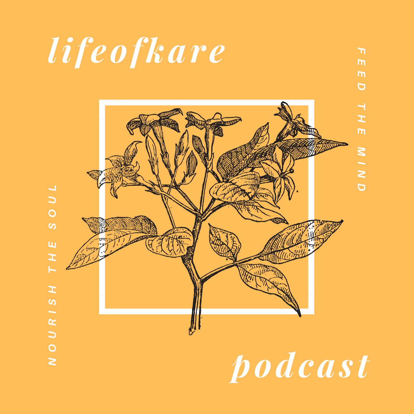 The LifeofKare Podcast show art