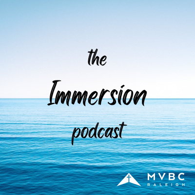 The Immersion Podcast show image