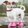 Artwork for Rebel FM Episode 402 - 01/25/2019