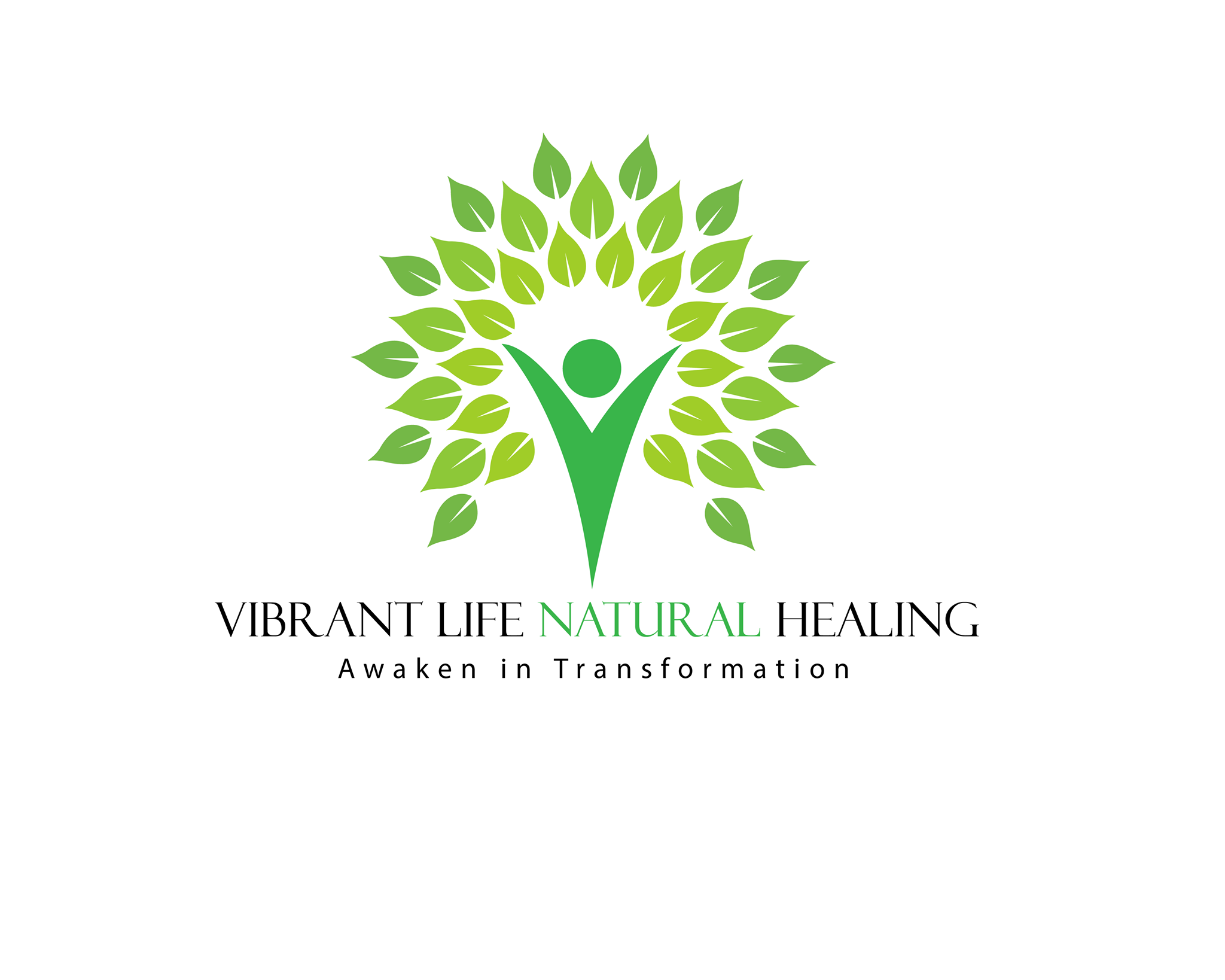 Vibrant Life Podcast show art