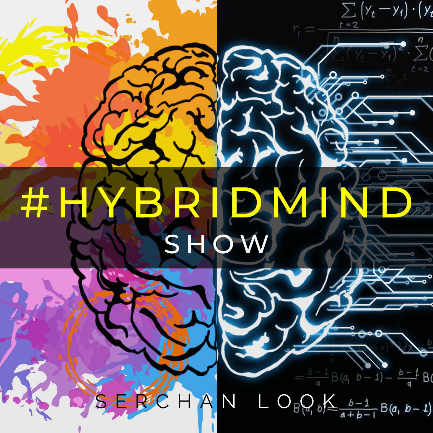 #0 Trailer - Hybrid Mind Show
