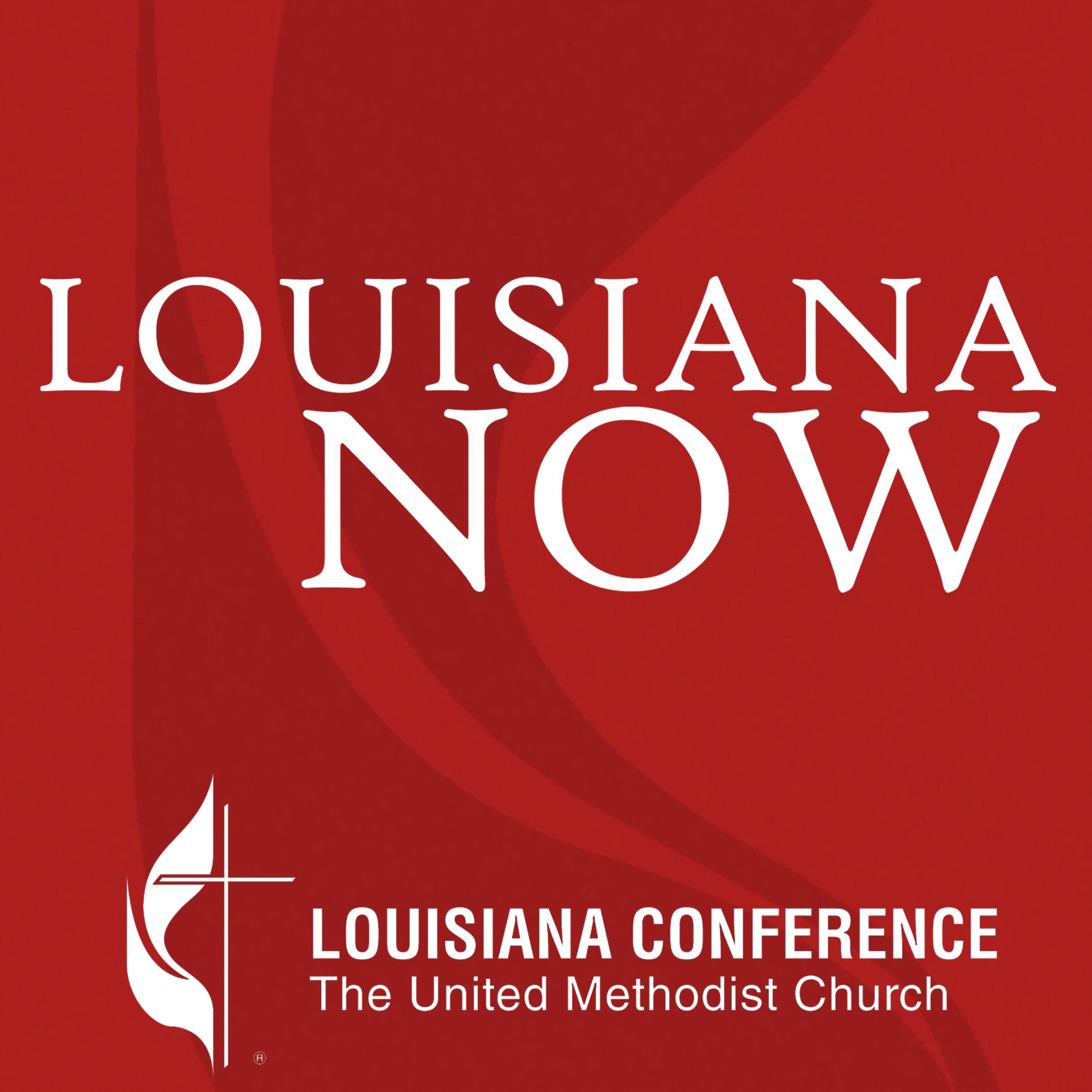 Louisiana Now show art