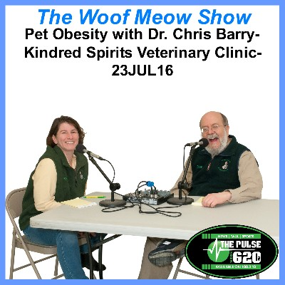 Pet Obesity with Dr. Chris Barry – Kindred Spirits Veterinary Clinic