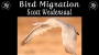 Artwork for The World of Bird Migration with Scott Weidensaul