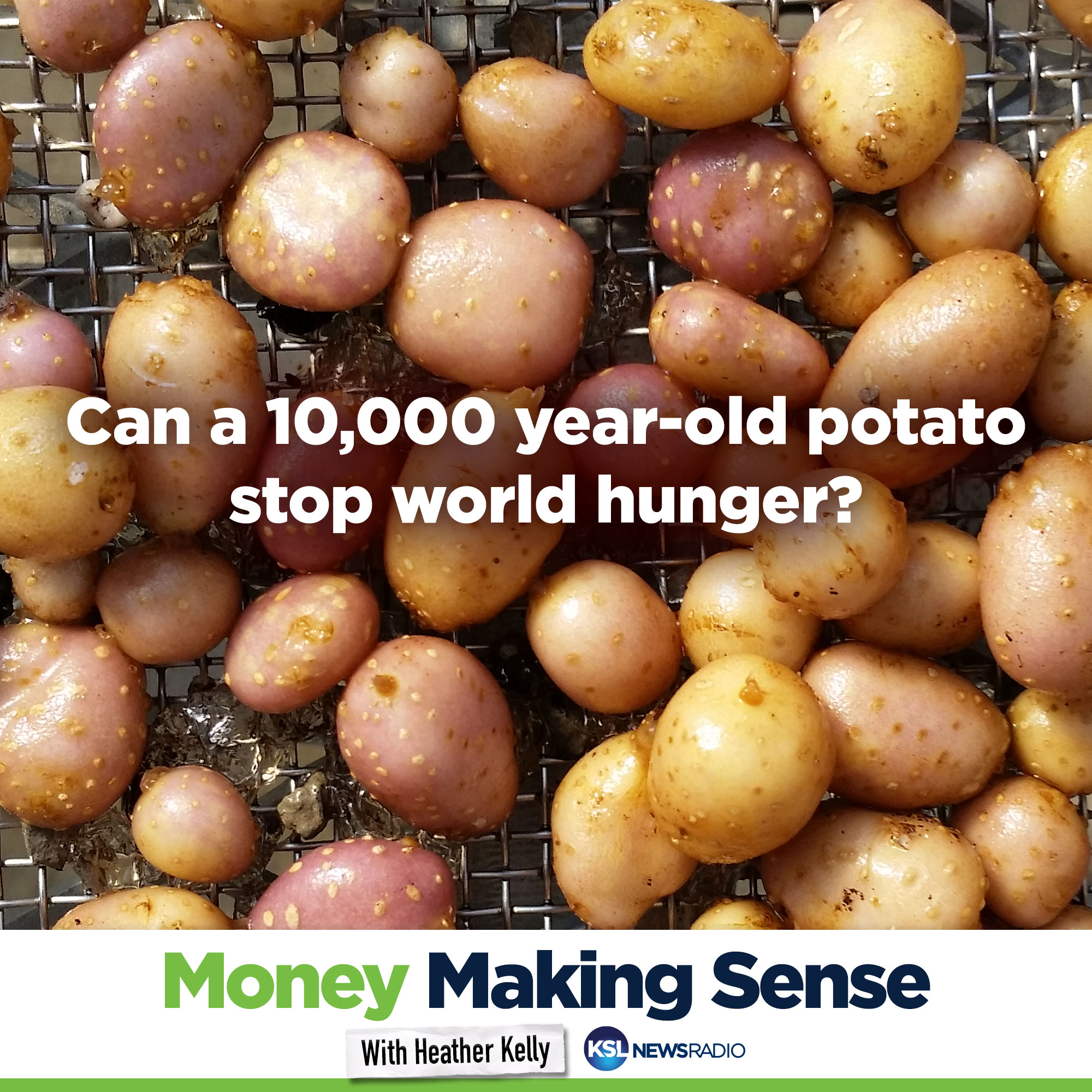 Artwork for [VIDEO] Can a 10,000 year old potato stop world hunger? - Part III
