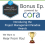 Artwork for Introducing the Project Management Paradise Awards