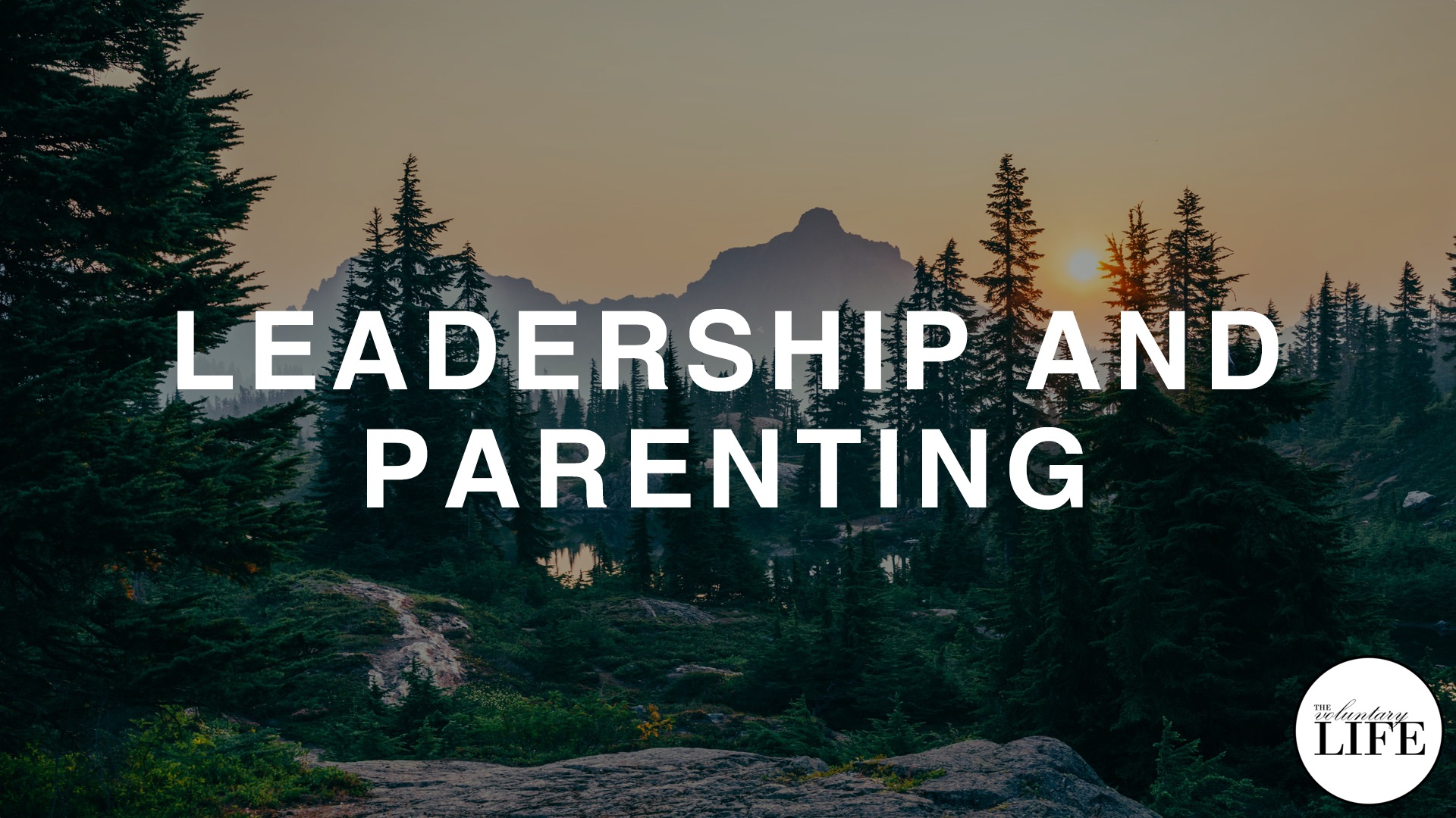 338 Leadership and Parenting