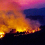 Artwork for California Wildfires: Risks, Preparedness, Business Continuity, and the Impact on Insurance Markets