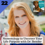 Artwork for 22: Numerology to Uncover Your Life Purpose with Dr. Bender