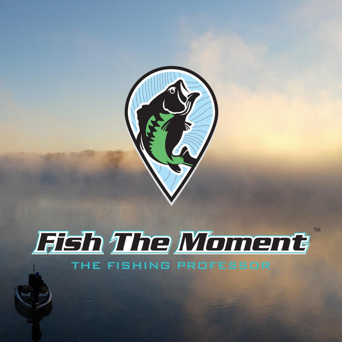 Is Livescope Making Fishing Harder |FTM Livestream #96