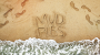 Artwork for MUD PIES - Flip Flops and Beach Chairs