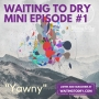 "Artwork for WTD Mini Episode 1 ""Yawny"""