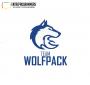 "Artwork for Team Wolfpack Episode 25 ""Quarter of 100"""