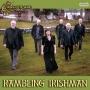 Artwork for Rambling Irishman #408
