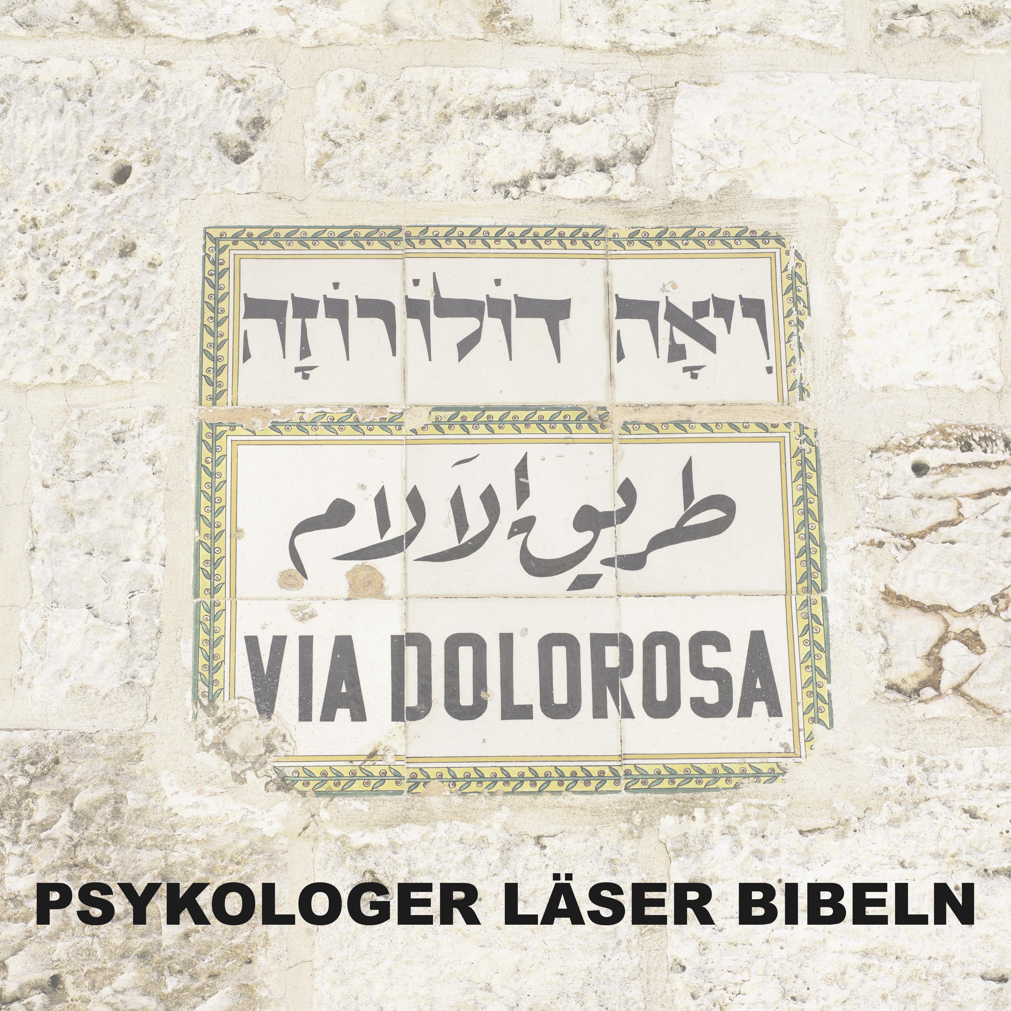 Psykologer läser Bibeln show art