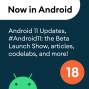 Artwork for 18 - Android 11, #Android11: The Beta Launch Show, articles, codelabs, and a podcast